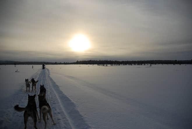 Canada-dogsledding