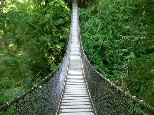 Pont suspendu de Canyon Lynn Park