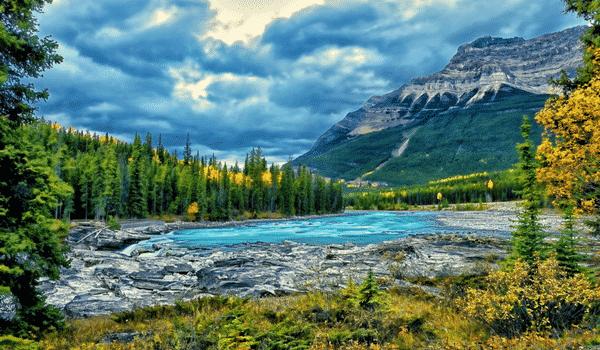 En route pour le parc Jasper pendant ton stage au Canada