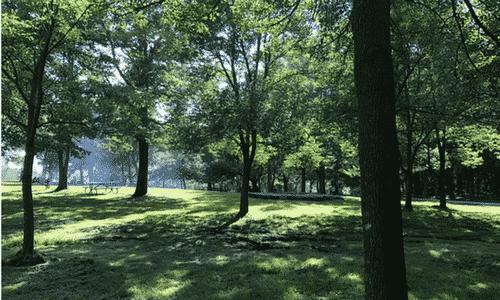 Montréal au printemps, Montréal au printemps : 5 idées de sorties