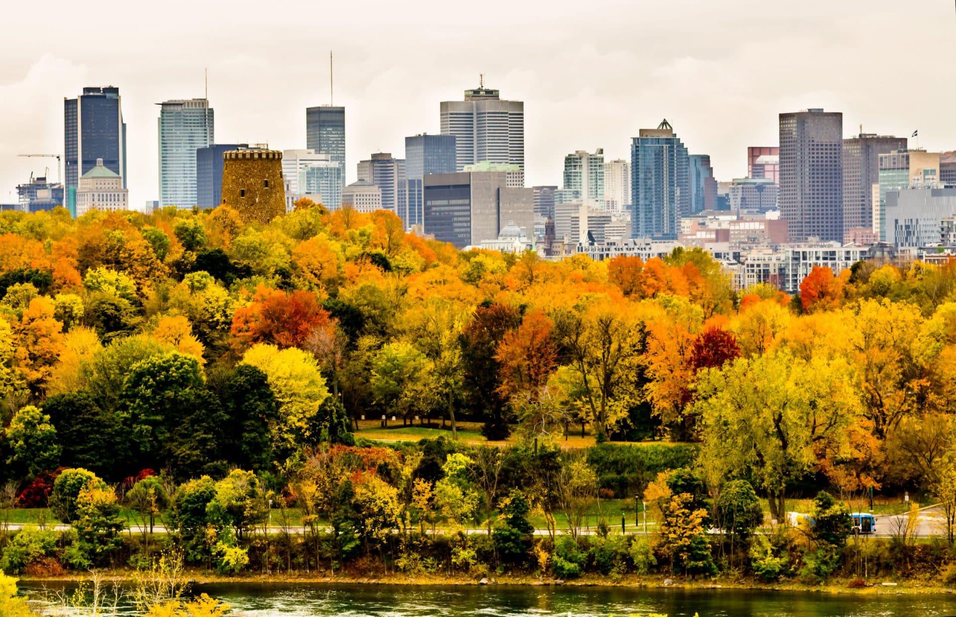 Comment faire son stage à Montréal ?